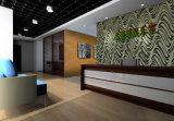 Hot Sale Eco Friendly en vedette le panneau de bois décoratifs artistiques