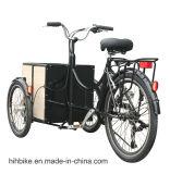 250W Fiets de Met drie wielen van de Lading van de motor Elektrische met de Rem van de Schijf