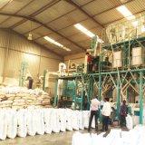 Farinha do milho que faz a máquina para África
