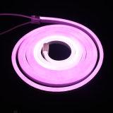 DMX che insegue l'indicatore luminoso al neon della flessione del LED per il Pub
