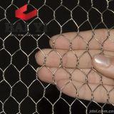 engranzamento de fio sextavado revestido do PVC do engranzamento do fio 25mm de 0.8mm