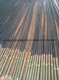 Leistungsfähiger Entwurfs-Indien-Betonverdichter 45X6m