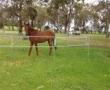 Ближний свет с возможностью горячей замены оцинкованного 3 баров скота крупного рогатого скота лошадей во дворе Corral панелей