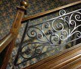 Doubles escaliers droits d'intérieur de fer travaillé de lisse avec des opérations de chêne