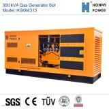 300 kVA générateur de gaz avec moteur Googol 50Hz