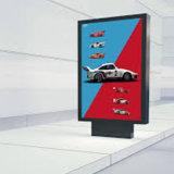 A forma do projeto personalizou o anúncio de Lightbox tomado o partido dobrado