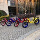 20inch Fat pneu E électrique Pliant Vélo pour les filles