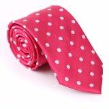 Cravate tissée par polyester neuf de modèle (844-17)