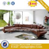 Sofà moderno di legno della casa del salone di modo (HX-S269)