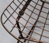 Провод металла мебели самомоднейшего классицистического трактира напольный обедая стул отдыха
