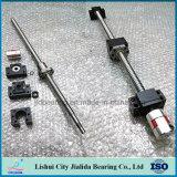 Tornillo de posicionamiento de la asamblea del tornillo de la bola de la precisión de China 12mm-80mm