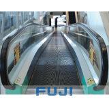 판매를 위한 FUJI 이동하는 보도