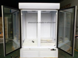 Congelatore di vetro verticale dell'annuncio pubblicitario del portello di qualità di Hight