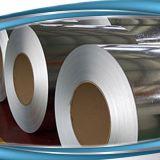 Coils&Sheets d'acciaio galvanizzato