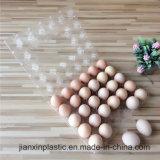6 trous de 30 trous d'oeufs en plastique PET plateau jetable