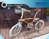 Intelligenter E-Fahrrad konkurrenzfähiger Preis-Bestseller-elektrisches Fahrrad-Ion PRO