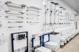 Filigrana e cisterna standard australiane del vetro temperato di approvazione di Wels per la toletta/serbatoio della toletta (6013T-B)