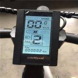 高品質500Wのリチウム電池3 3つの車輪の脂肪質のタイヤEbike