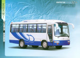Langer touristischer Bus (ZGT6730DH)