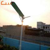 Outdoor Power Lampe LED solaire de jardin Street (l'ajout deverre trempé)