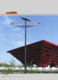 Bestes Solar Street Lights mit Sonnenkollektoren