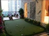 سعر رخيصة يمزح عشب اصطناعيّة, حديقة عشب, يرتّب عشب, لعبة غولف عشب, عشب ([غ13-2])