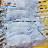 De verkopende Bevroren Vreedzame Vleespen van het Noorden van Zeevruchten
