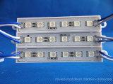 5pieces LED를 가진 DC12 에폭시 LED 모듈을 판매하는 높은 광도 5054 공장