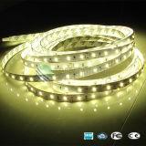 Super luminosité SMD 2835 Bande LED avec 60LED/M