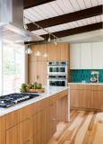 رجّاجة أسلوب حديثة مطبخ تصميم