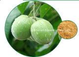 ルオハン郡野のエキスか修道士のフルーツのエキスMogroside V 6%-90%、酸化防止剤