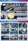 Stampante della tessile del getto di inchiostro di Digitahi di prezzi di fabbrica