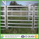 Australia Galvanized Cattle Yard Panel para la venta