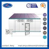 Compresseur de Bitzer d'entrepôts frigorifiques de pièce d'entreposage au froid de fruits