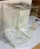 Hochwertige freie Acrylvogel-Zufuhr mit starken Allwetter- Absaugung-Cup