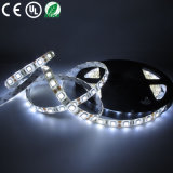 Impermeable RGB LED tira flexible de la lámpara (WF-FTOP5008-3035-12V)