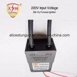 220V eingegebener elektronischer Gas-Anzünder