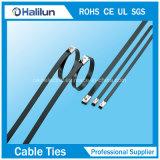 Adujustable Custom PVC Coated Self-Lock Attache en acier inoxydable