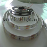 Ultrabright 0.5W per LED, 50-55lm per LED, striscia di 12V/24V 5630 LED