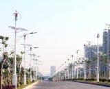 100W generador de viento Permannet del imán vertical de la CA 12V pequeño para la venta (SHJ-NEV100Q1)