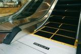Escalera móvil de interior del control de Vvvf de 35 grados con la luz del panel de la falda