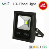 10W LED Flood Light Série économique avec chips Epistar