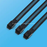 316 Epoxy Coated Ladder Single Barb Lock Acier inoxydable pour la construction navale
