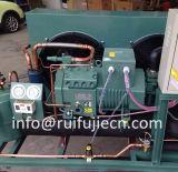 Compresseur refroidi à l'air d'Unit-Spb09kl Bitzer se condensant pour le modèle 4tes-9y