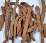 Estratto della radice di Tanshinone Danshen per gli alimenti ed il supplemento