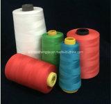 Filato tinto del PCT Polyeste dei coni 100 del bambino di colori