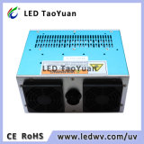 inchiostro UV LED di 365/395nm LED 300W che cura modulo