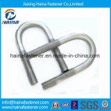 Bullone dell'acciaio inossidabile Ss304/Ss316 U del fornitore della Cina