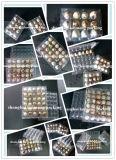 Китай оптовое 12PCS продырявит пластичная коробка подносов яичка триперсток для пакета яичка триперсток
