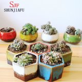 Cadeaux et planteur en céramique de poterie de terre de Flowerpot de décor